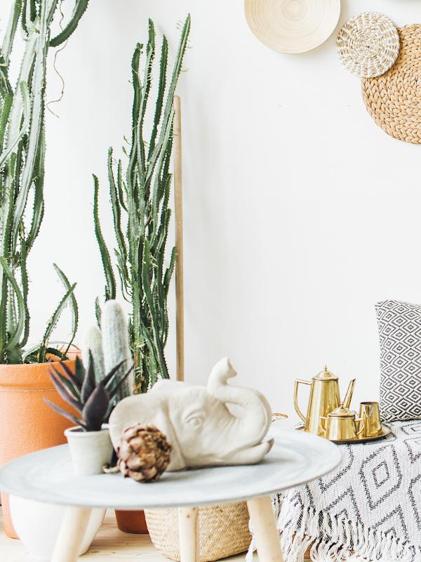 Pflanzen und Deko im Boho Style